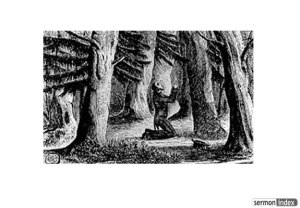 An engraving of Charles Finney praying in the woods.  [PD-1923]